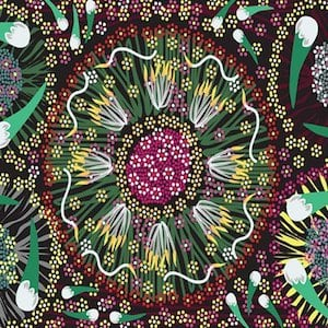 Plum And Bush Banana Black - Authentic Aboriginal Fabric
