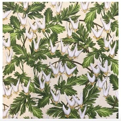 Dutchman's Breeches, Wildflowers of Maine Fabric