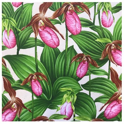 Lady Slipper, Wildflowers of Maine Fabric