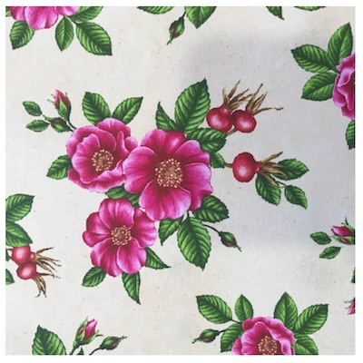 Sea Rose (Rugosa Rose), Wildflowers of Maine Fabric