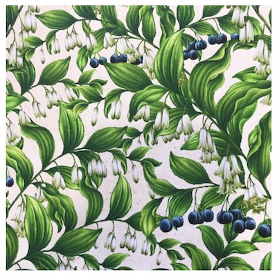 Solomon's Seal, Wildflowers of Maine Fabric