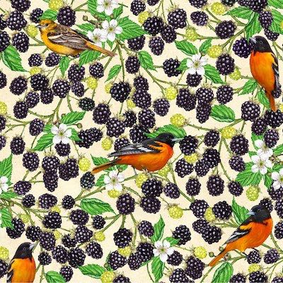 Baltimore Oriole with Blackberry, Birds and Berries of Maine Fabric