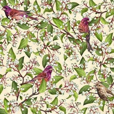 Purple Finch with Gray Dogwood, Birds and Berries of Maine Fabric