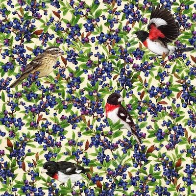 Rose-Breasted Grosbeak with Blueberry, Birds and Berries of Maine Fabric
