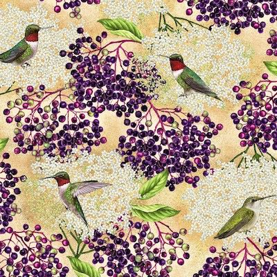 Ruby-Throated Hummingbird with Elderberry, Birds and Berries of Maine Fabric