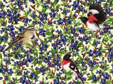 Rose Breasted Grosbeak with Blueberry, Birds and Berries of Maine Fabric