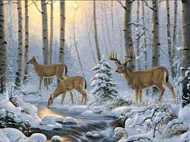 Winter Deer Panel at Dark Star Fabrics' Etsy Shop